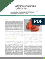 Camote Fuente de Colorantes 2017 INIA CHILE NR40586