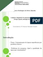 Slides Projeto Tcc
