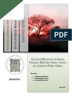 Estudio de Mercado Prounilac=.docx
