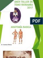Anatomía Básica Final