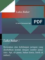 Lecture Luka Bakar 280915