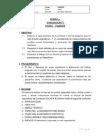 Rúbrica T3 Curso Caminos 2019-1