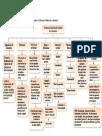 mapa conceptual BPL MARIA GAMEZ.pdf
