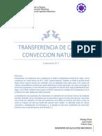 Transferencia de Calor Conveccion Natural