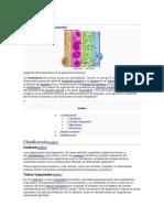 hematosis.docx