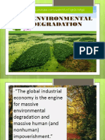 Environmental Degredation