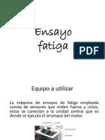Fatiga Prueba