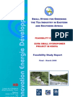 Feasibility Study Report on Gura Shp