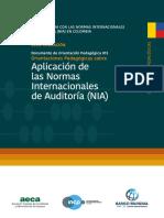 Aplicacion de las normas internacionales de auditoria.pdf