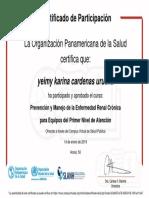Prevención y Manejo de La Enfermedad Renal Crónica Para Equipos Del Primer Nivel de Atención-Certificado Del Curso 224843