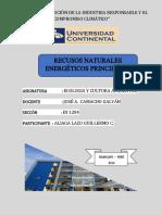 Recursos naturales energeticos.docx