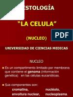 A La Celula 17