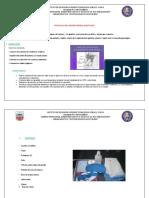 Protocolo Del Higiene Perinea1