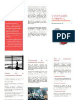 Conceptos-de-la-contaminación.docx