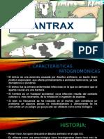 Antrax, Carbunculo y Tetano