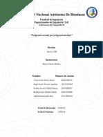 INFORME FINAL POLIGONAL CERRADA.docx