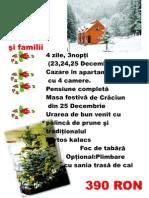 Craciun 2010 grupuri, familii