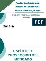 CAPÍTULOS 5 Y 6 PROYECTOS.ppt