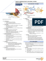 Microsoft Word - Pharma B_Intro to CNS & Opioids.pdf