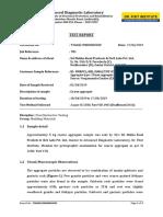 203_Report_Copy.pdf