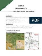 INFORME obras hidraulica  guayaramerin.docx