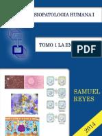 Morfofisiopatologia I UNIDAD I Samuel Reyes