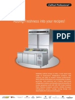 Professional.pdf