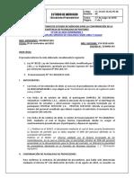 IEM_Pluralidad de postores.pdf