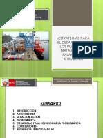 «Estrategias Para El Desarrollo de Los Puertos de Matarani, Ilo, Salaverry y Chimbote»