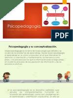 Concepto de Psicopedagogía, Rol y Función