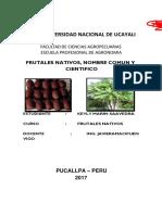 Frutales Nativos de la Amazonía Peruana