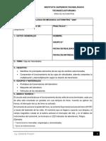 FORMATO_GUIA DE PRACTICAS_2.docx
