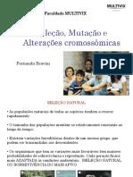 2019517_211156_Aula+6+-+Variação+genetica+e+alteração+cromossomica (4)