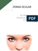1 Anatomia Ocular 1