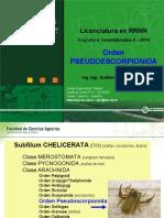 43-af-2--pseudoescorpionida-2014