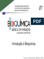 Aula - bioquímica