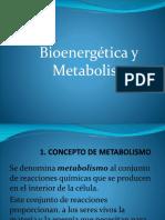 Clase Bioenergética
