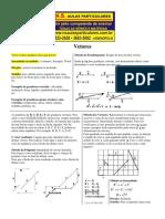 Vetores-resumo.pdf