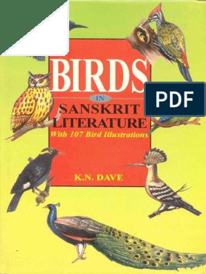 The birds of pandemonium pdf free. download full
