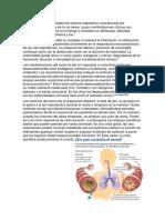 Enfermedades Del Sistema Respiratorio JAVIER