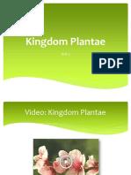kingdom_plantae.pptx