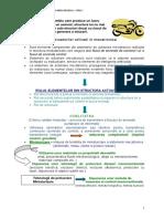 ACTUATORI_NECONVENTIONALI_IN_MECATRONICA.pdf