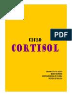Ciclo Cortisol.pdf