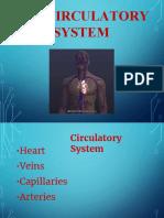 Circulatory system (1).pdf