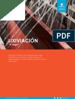 Lixiviacion Media t Cnico 080119