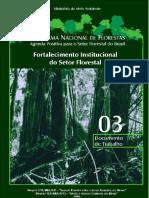 PNF - Fotalecimento Institucional Do Setor Florestal