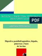Clase 9 DIGESTIVO POST DIAFRAGMATICO RUMIANTES (1).ppt