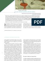 La_imagen_en_crisis_el_efecto_anestesico.pdf