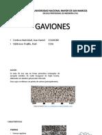 Gavi Ones