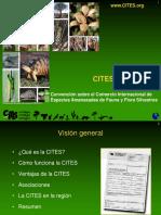 CITES[1].ppt